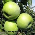 Симиренковец